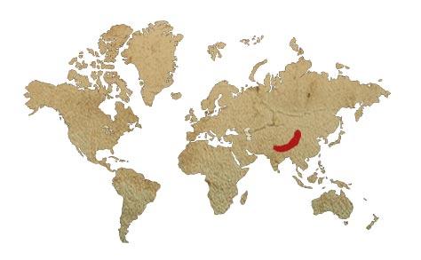 Localización del Oso Panda Rojo