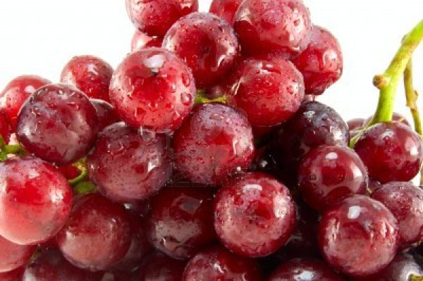 10-alimentos-peligrosos-en-una-barbacoa-para-los-animales-domesticos-perros-y-gatos-uvas