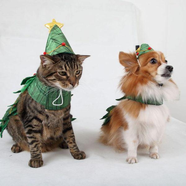 como-hacer-disfraces-de-navidad-para-perros-y-gatos-perro-y-gato