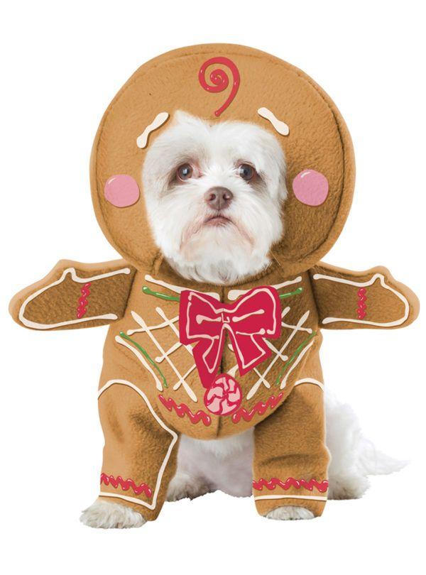 como-hacer-disfraces-de-navidad-para-perros-y-gatos-reno-y-arbol-galletas-de-navidad
