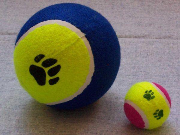 cual-es-el-mejor-juguete-para-mi-perro-juego-pelotas
