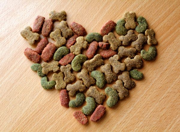 Como hacer galletas para perros otras recetas