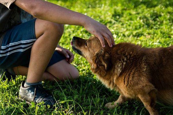 nombres-mitologicos-chico-acariciando-perro