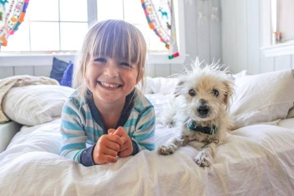 Perros para ninos mestizo