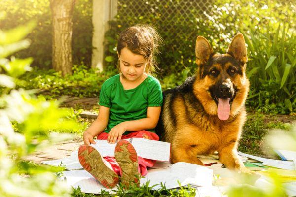 Perros para ninos pastor aleman