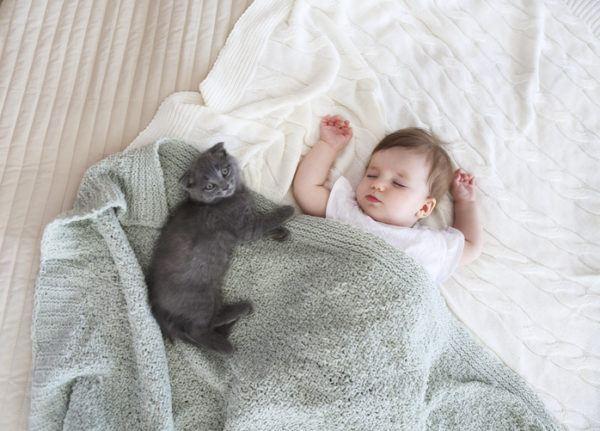 Beneficios de tener un gato alergias
