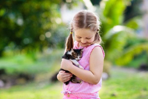 Beneficios de tener un gato cuidados