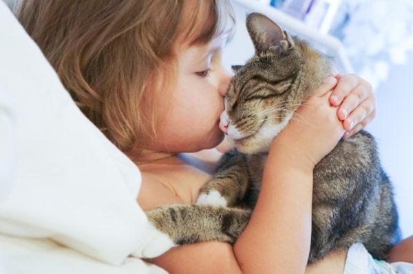 Beneficios de tener un gato nena