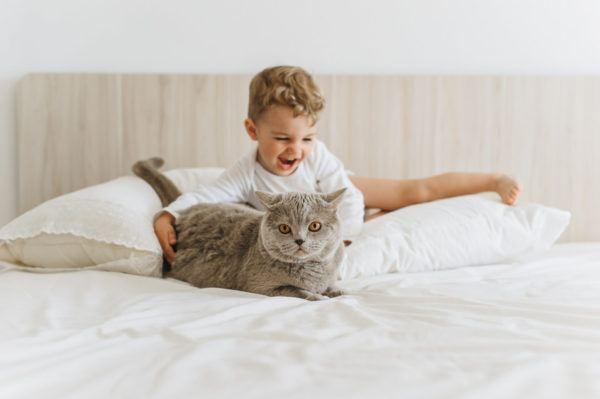 El gato y los niños pequeños