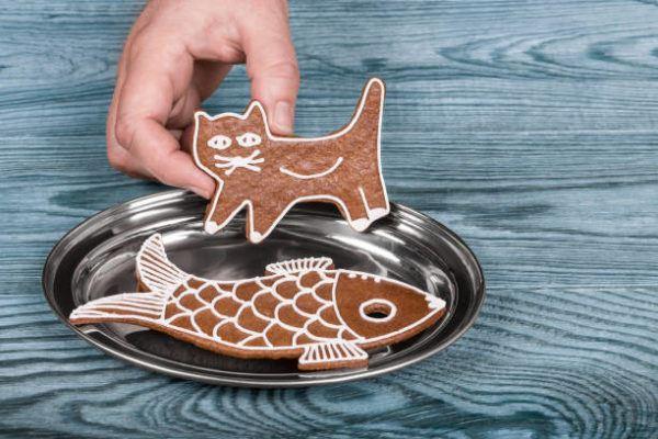 Cómo hacer galletas gatos