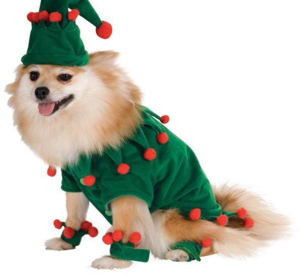 difraz duende perro pequeño