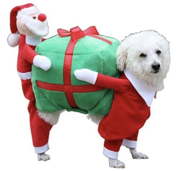 disfraz perro paquete
