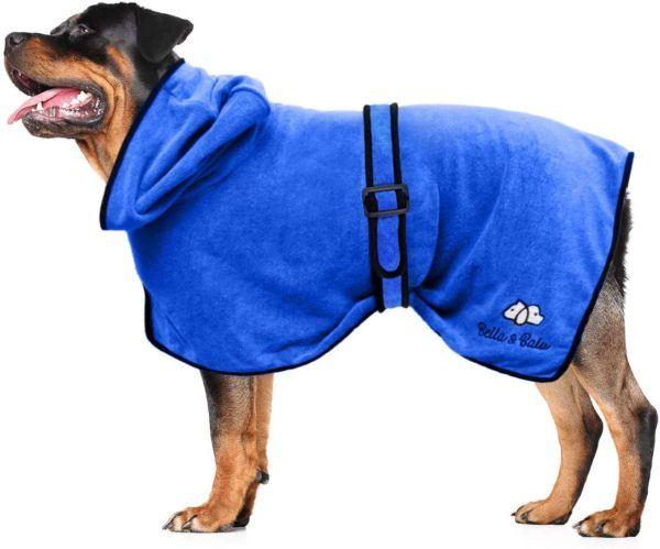 Los mejores consejos para proteger a nuestros perros del frío y la nieve albornoz