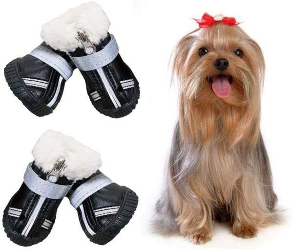Los mejores consejos para proteger a nuestros perros del frío y la nieve botas nieve