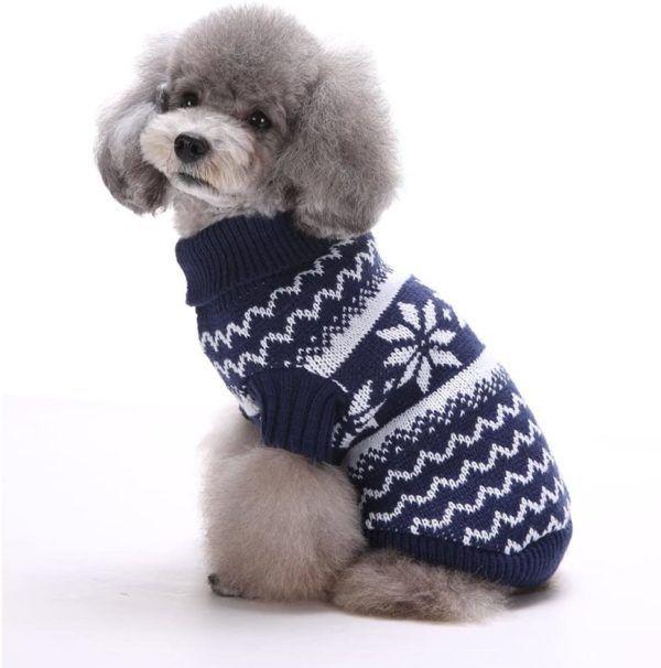 Los mejores consejos para proteger a nuestros perros del frío y la nieve suéter