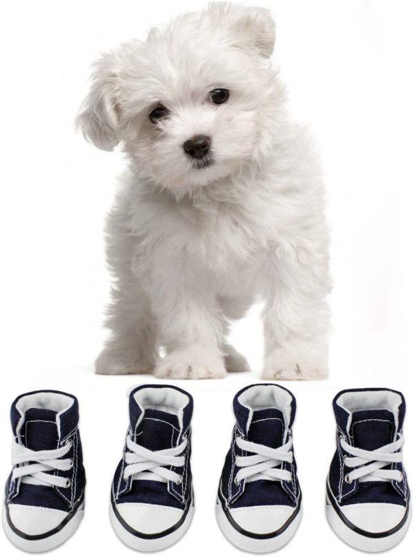 Los mejores consejos para proteger a nuestros perros del frío y la nieve botas de lona