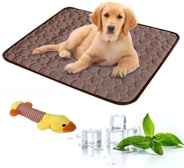 Las mejores camas de verano para perros - Las más vendidas Almohadilla enfriamiento