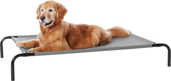 Las mejores camas de verano para perros - Las más vendidas Amazon Basic hamaca