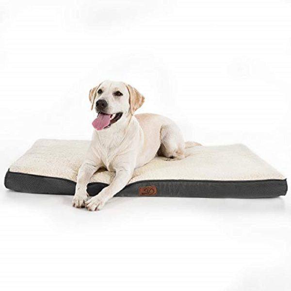 Las mejores camas de verano para perros - Las más vendidas Bedsure