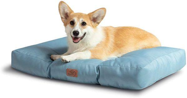 Las mejores camas de verano para perros - Las más vendidas Bedsure impermeable