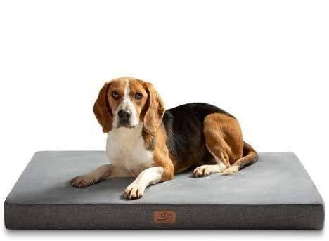 Las mejores camas de verano para perros - Las más vendidas Bedsure ortopédica