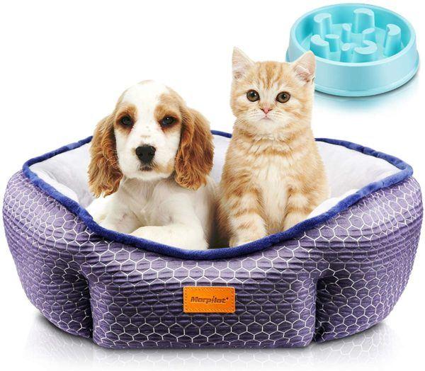 Las mejores camas de verano para perros - Las más vendidas Marpiat