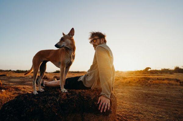 Las mejores razas de perros para el verano Basenji