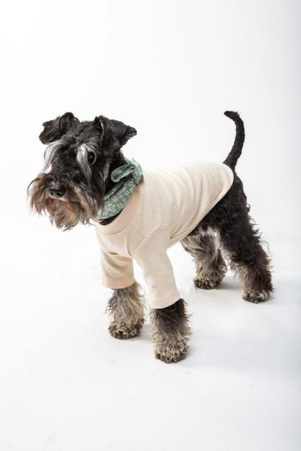 Cómo hacer un abrigo para nuestros perros camiseta