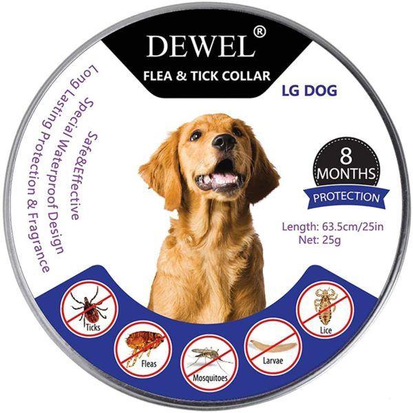 Los mejores y más efectivos collares antiparásitos para perros Dewel