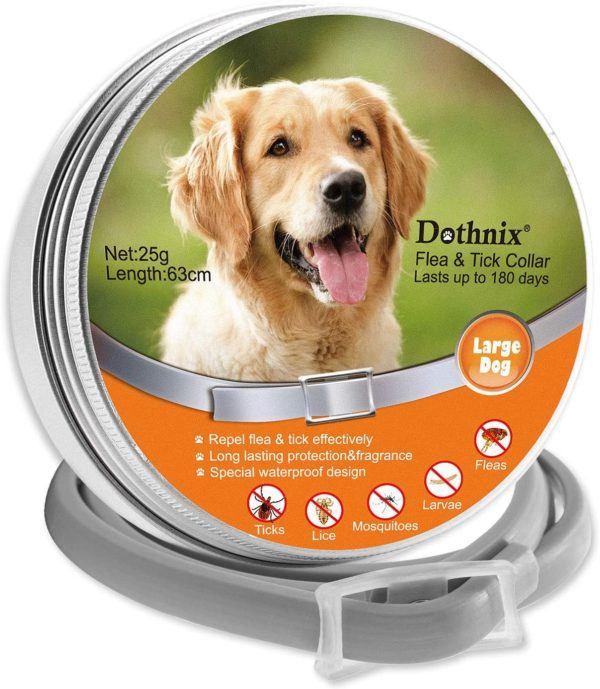Los mejores y más efectivos collares antiparásitos para perros Dothnix