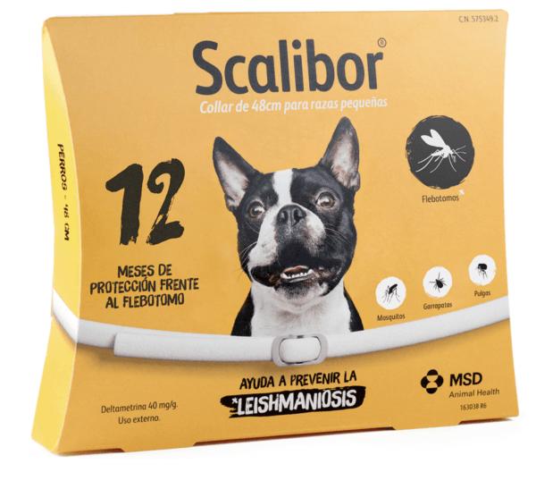 Los mejores y más efectivos collares antiparásitos para perros Scalibor