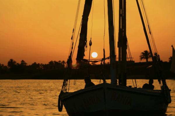¿Qué animales viven en el Rio Nilo? Portada