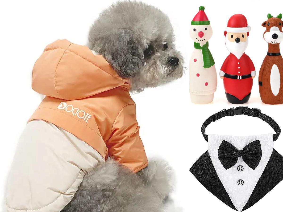 10 regalos de Navidad para perros portada