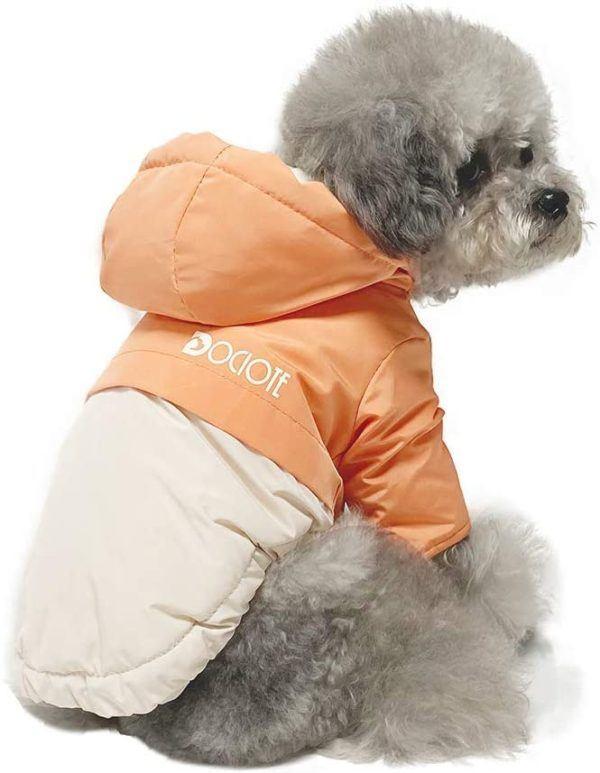10 regalos de Navidad para perros abrigo