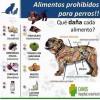 Cuáles son los Alimentos Prohibidos para las Mascotas