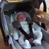 Es la primera vez que este gato ve a un bebé y esto es lo que pasa