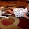 El vídeo con más amor del mundo: Un perro enseña a una niña pequeña a gatear