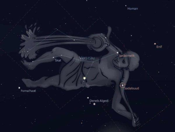 el-horoscopo-tambien-permite-conocer-la-personalidad-de-nuestros-perros-acuario