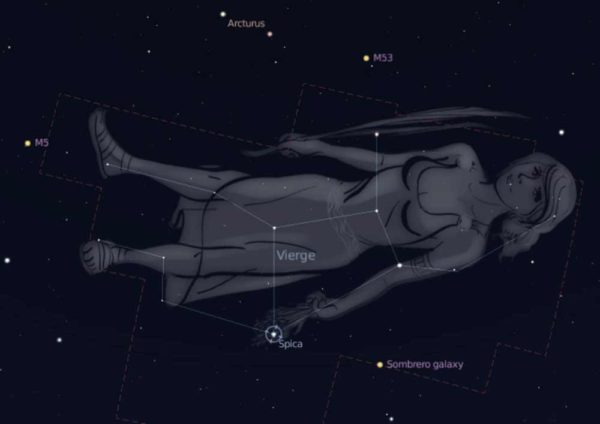 el-horoscopo-tambien-permite-conocer-la-personalidad-de-nuestros-perros-fechas-virgo