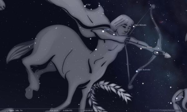 el-horoscopo-tambien-permite-conocer-la-personalidad-de-nuestros-perros-sagitario