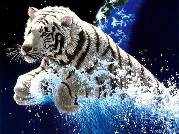 las-mejores-fotos-de-tigres-foto-11