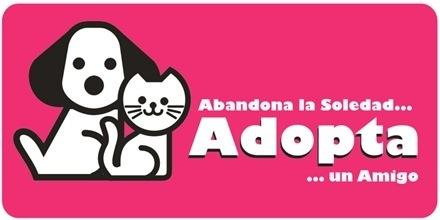 adopcion-g
