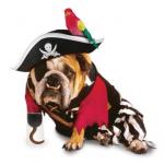Disfraces para perros Halloween 2009 pirata