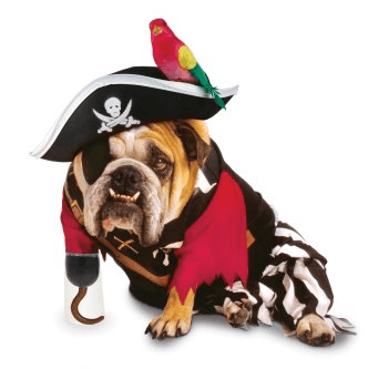EL HILO DE LOS AMIGUETES XII Disfraces-para-perros-Halloween-2009-pirata