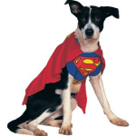 Disfraces para perros Halloween 2009 superman