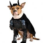 Disfraz para perro de El Caballero Oscuro