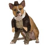Disfraz para perro de Indiana Jones