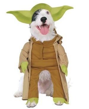 Disfraces para perros Halloween 2009 maestro yoda