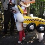 disfraces-caseros-para-mascotas-halloween-taxi