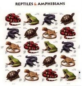 lista de reptiles